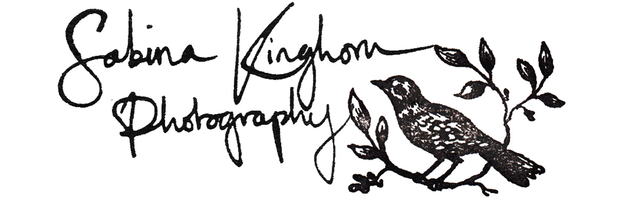 Sabina Kinghorn Photography logo